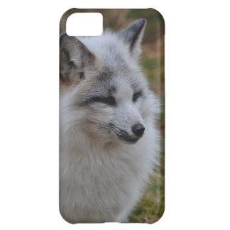 Beautiful White Swift Fox iPhone 5C Case