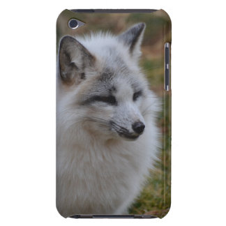 Beautiful White Swift Fox iPod Touch Cover