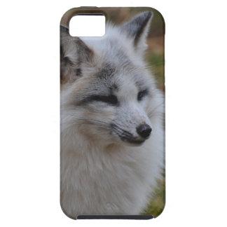Beautiful White Swift Fox Tough iPhone 5 Case
