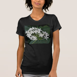 Beautiful White Tropical Flowers Ladies T Shirt