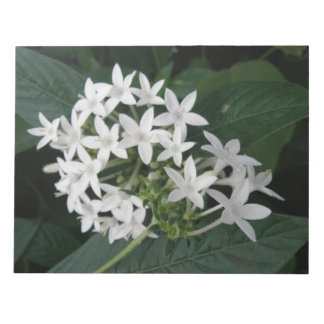 Beautiful White Tropical Flowers Notepad