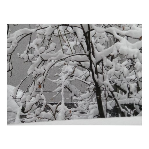 Beautiful Winter Scene Poster