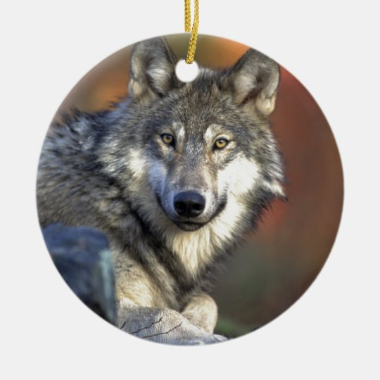 Beautiful Wolf Christmas Ornament