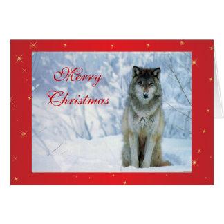 Beautiful wolf in snow photo custom christmas card