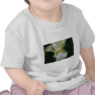 Beautiful Yellow and White Iris Flower Tee Shirts
