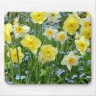 Beautiful yellow daffodil garden mouse mat