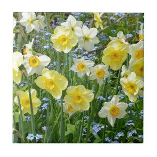 Beautiful yellow daffodil garden small square tile