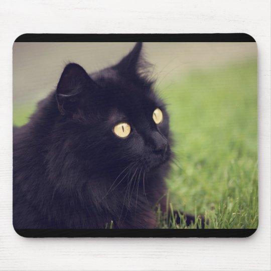 Beautiful Yellow Eyed Black Cat Mouse Mat