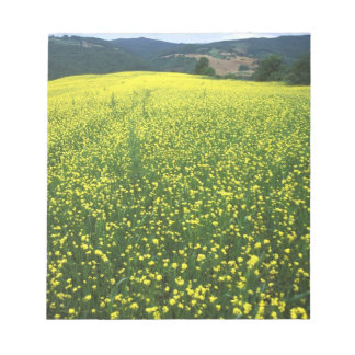 Beautiful yellow flower covered fields of San Notepad