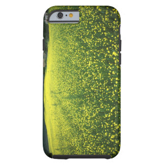 Beautiful yellow flower covered fields of San Tough iPhone 6 Case