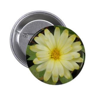 Beautiful Yellow Marigold Button