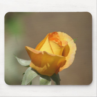 Beautiful Yellow Rose Bud Mouse Pad