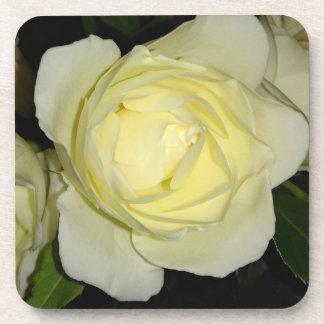 Beautiful Yellow Rose Coaster