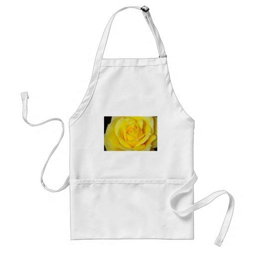 Beautiful yellow rose petals apron