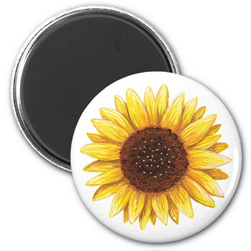 Beautiful yellow sunflower drawing fridge magnet