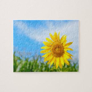 Beautiful Yellow Sunflower Jigsaw Puzzle