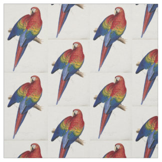beautifully coloured macaw parrot fabric