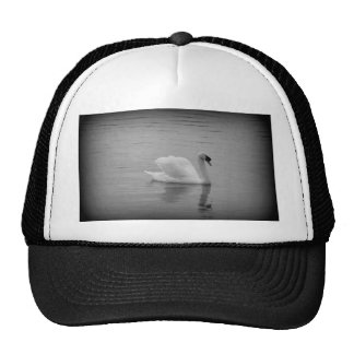 Beauty and Elegance 2 Hat