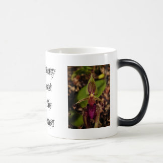 Beauty and the Beast Orchid Morphing Mug