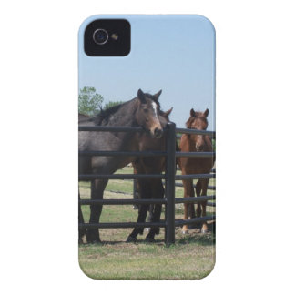 Beauty behind the fence Case-Mate iPhone 4 cases