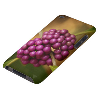 Beauty Berry Barely There iPod Cases