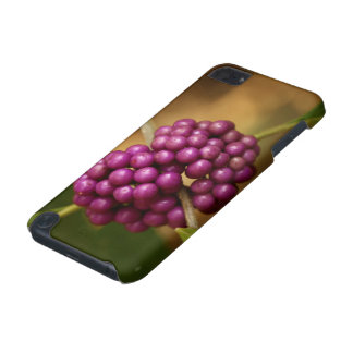 Beauty Berry iPod Touch (5th Generation) Covers
