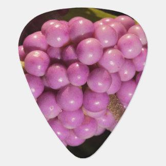 Beauty Berry Guitar Pick