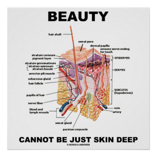 Beauty Cannot Be Just Skin Deep (Skin Layers) Poster