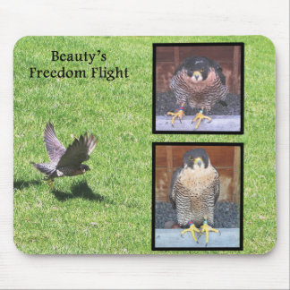 Beauty Freedom Flight Mousepad