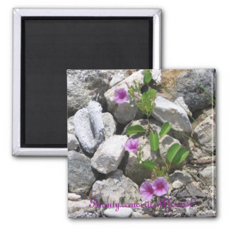 Beauty in all forms Frig Magnet! Square Magnet