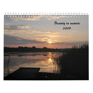 Beauty in nature2009 wall calendar