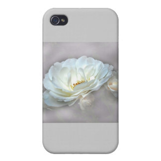 BEAUTY IN THE MIST iPhone 4 CASE
