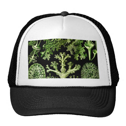 Beauty of team work and integration weave lichen mesh hats