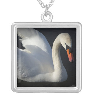 Beauty of the swan silver plated necklace
