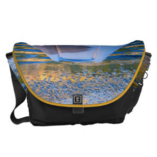 Beauty on Ice Commuter Bags
