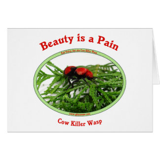 Beauty Pain Cow Killer Wasp Greeting Cards