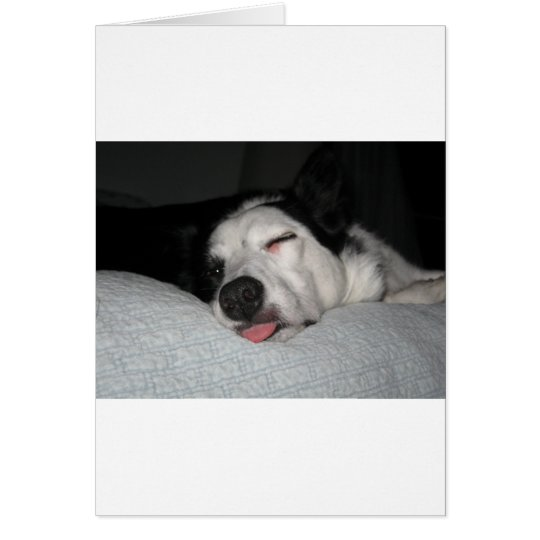 Beauty Rest Series Card