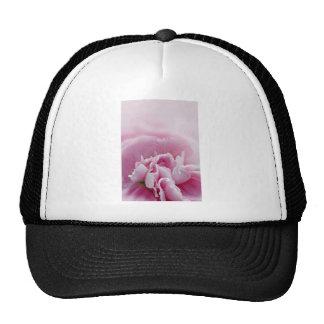 Beauty Themed Cap