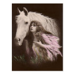 *Beauty With a White Horse* Vintage Postcard