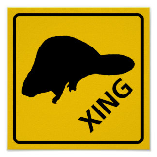 Beaver Crossing Highway Sign Poster