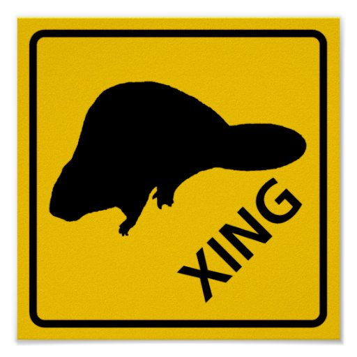 Beaver Crossing Highway Sign Posters