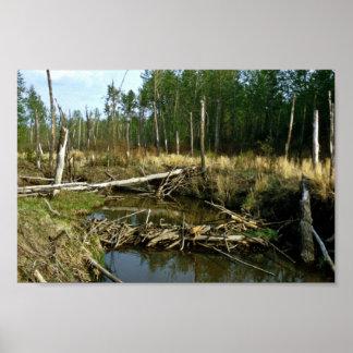 Beaver Dam Print