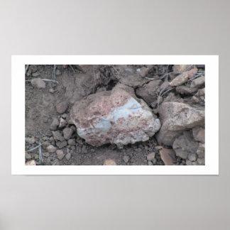 Beaver Dam Slough Geology Rock Earth History Stone Print