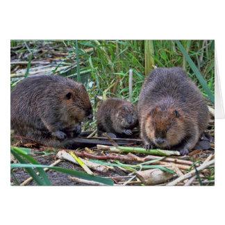 Beaver Family Card