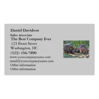 Beaver Family Pack Of Standard Business Cards