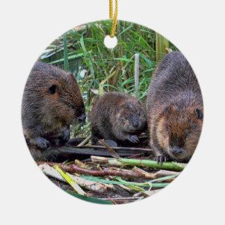 Beaver Family Round Ceramic Decoration