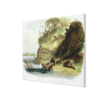 Beaver Hut on the Missouri, plate 17 from volume 1 Canvas Print