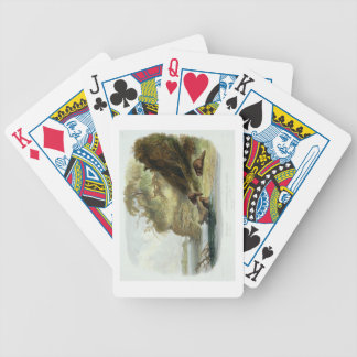 Beaver Hut on the Missouri, plate 17 from volume 1 Poker Deck