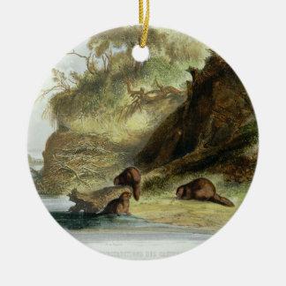 Beaver Hut on the Missouri, plate 17 from volume 1 Round Ceramic Decoration
