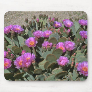 Beaver Tail Cacti Mouse Pads
